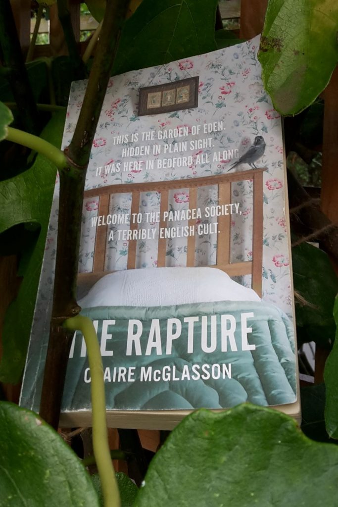 Book review: The Rapture by Claire McGlasson