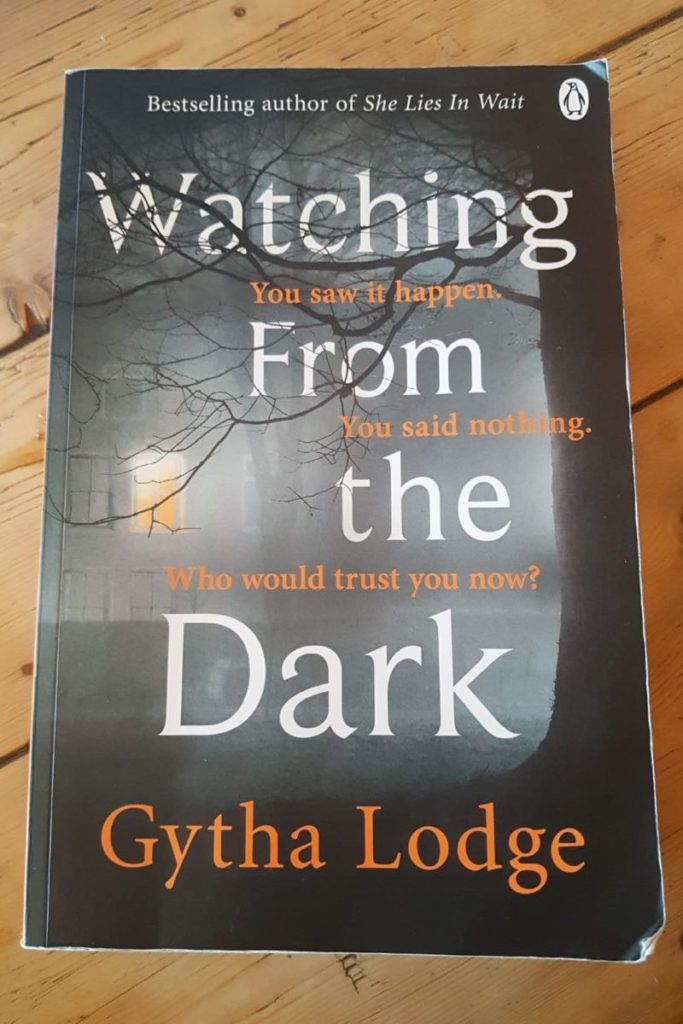 Book review: Watching From the Dark by Gytha Lodge