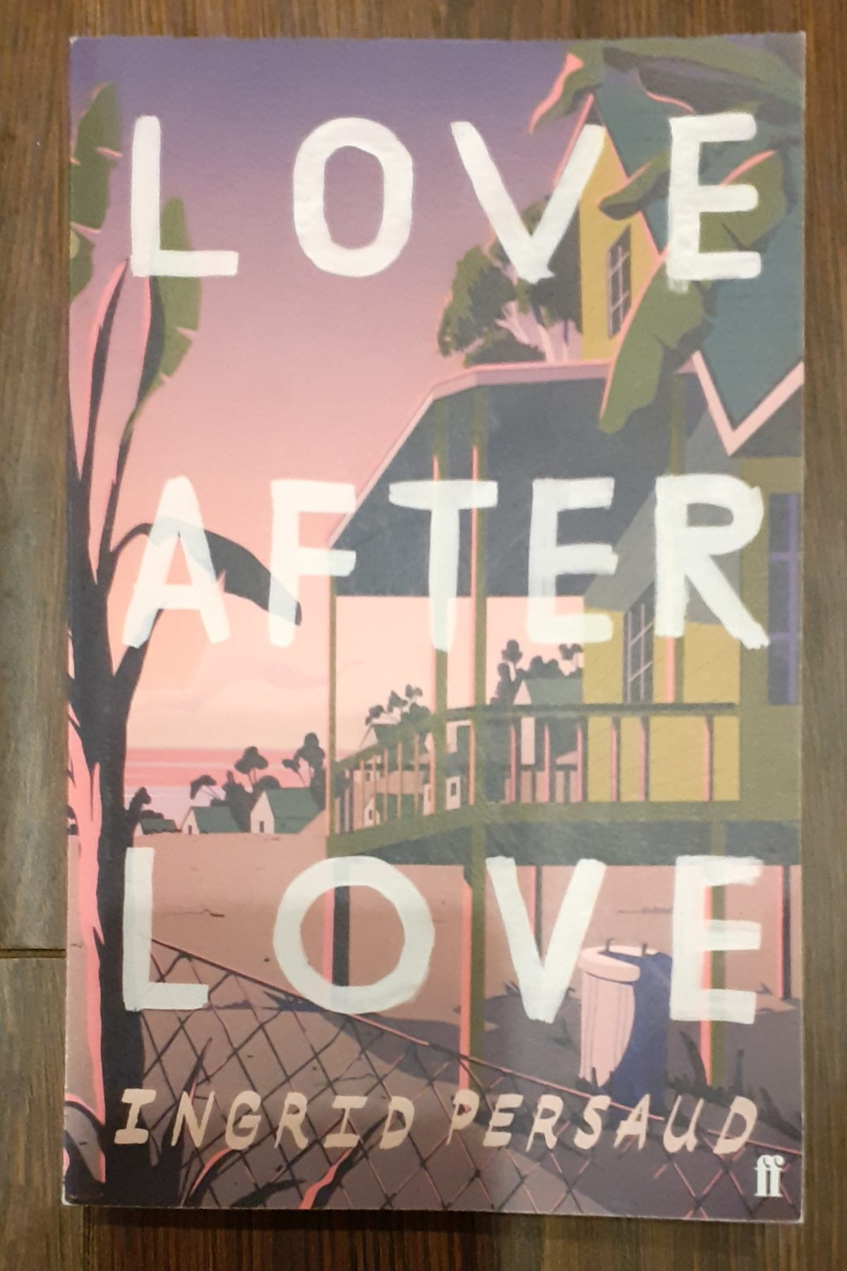 Book review: Love after Love, by Ingrid Persuad