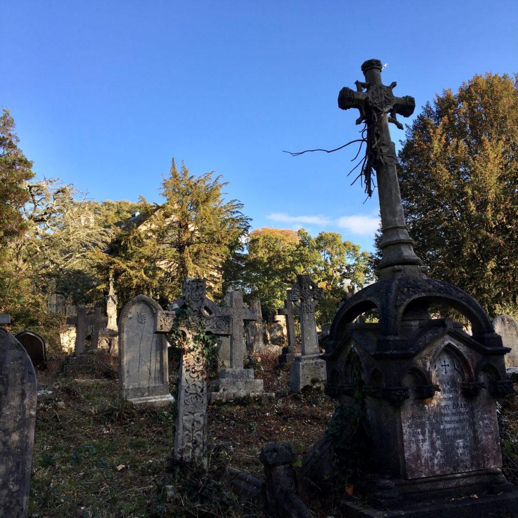 Suburban Safari: Southampton Old Cemetery