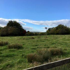 Suburban Safari: Itchen Valley Country Park