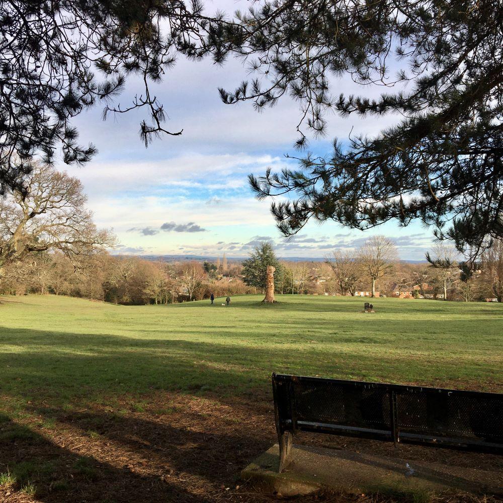 Suburban Safari: Hatch Grange