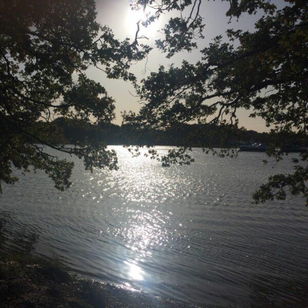 Walk: River Hamble Country Park in Bursledon