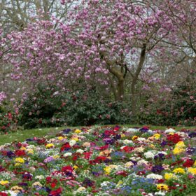 Southampton's central parks