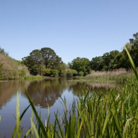Heritage: Our wonderful Southampton Common