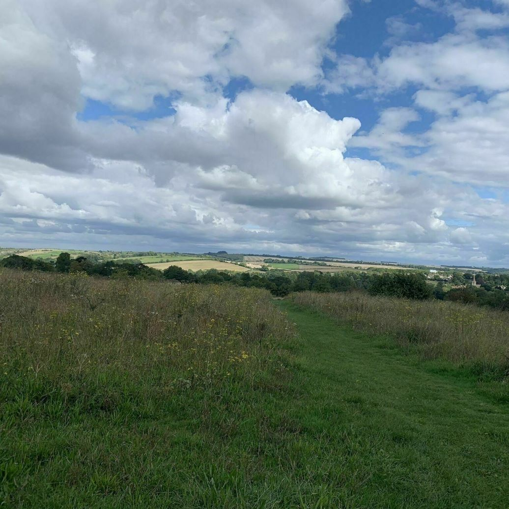 Walk: The Itchen Navigation, Shawford Down