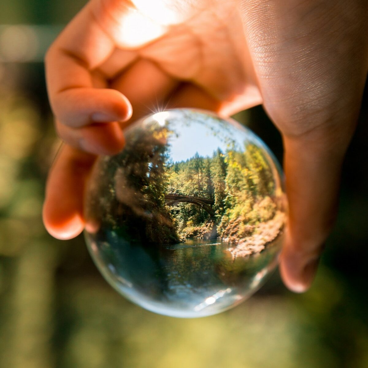 Group seeking community-based solutions to environmental crisis, Transition Southampton, holding AGM